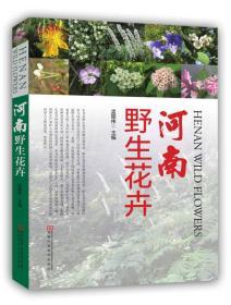 河南野生花卉