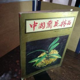 中国兰花精品