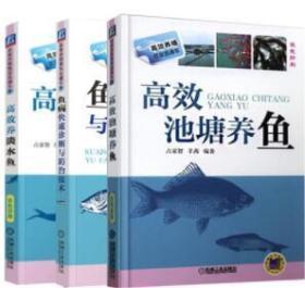 正版 鱼病快速诊断与防治技术+高效池塘养鱼+高效养淡水鱼 共三本 养鱼从入门到精通 养鱼书籍 水产淡水鱼养殖技术书