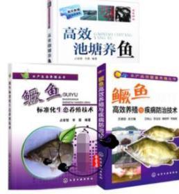 3本 高效池塘养鱼+鳜鱼(桂鱼)高效养殖与疾病防治技术+鳜鱼标准化生态养殖技术 养鱼技术书籍 鱼病防治技术 鳜鱼生态养殖技术书籍