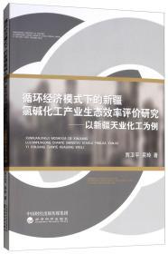 循环经济模式下的新疆氯碱化工产业生态效率评价研究