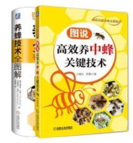 养蜂技术全图解+图说高效养中蜂关键技术 养蜂书籍大全 技术蜜蜂养殖书养蜂书 中蜂养殖技术养蜂教程养蜂教材书籍