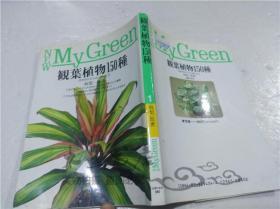 原版日本日文书 观叶植物150种 坂梨一郎 株式会社主妇の友社 1992年8月 32开软精装
