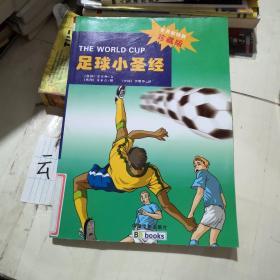 足球小圣经(世界杯特别珍藏版)