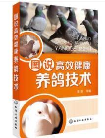 正版 图说高效健康养鸽技术 养鸽子书籍 肉鸽养殖书籍 饲料配制 饲养管理 常见病诊治 高效养鸽技术书籍大全 鸽场经营管理书籍