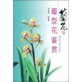 兰花瓣型花鉴赏