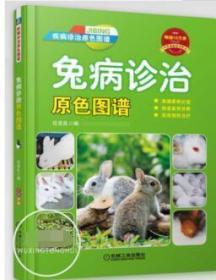 兔病诊治原色图谱 高效养兔技术书籍 兔病预防肉兔健康养殖技术 兔病防治书籍 养兔技术 兔子养殖技术大全书籍 科学养兔子饲养教程