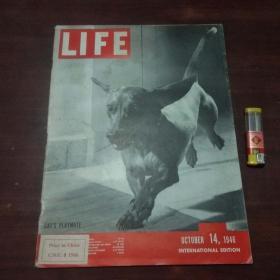原版英文杂志:美国生活周刊(1946年10月14)(民国时期8开老期刊)(LIFE)