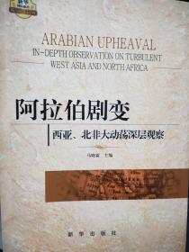 阿拉伯剧变:西亚、北非大动荡深层观察