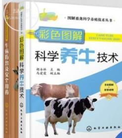 牛病防治及安全用药 +彩色图解科学养牛技术 全两2册 牛病免疫预防诊断方案合理科学用药指导书 养牛技术大全 肉牛养殖技术教程