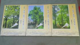 中国富阳 古树名木大全:新登镇分册(全3册一套)