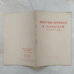 中国共产党第十届中央委员会第三次全体会议公报