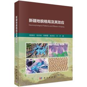 新疆地貌格局及其效应