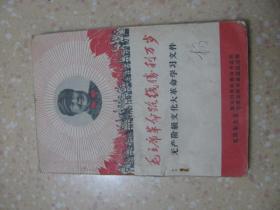 毛主席革命路线胜利万岁(无产阶级文化大革命学习文件)