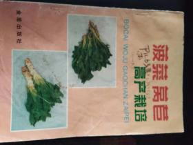 菠菜莴苣高产栽培