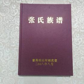 番禺歧山村:张氏族谱    精装本