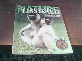 发现号 自然探秘 11狐猴的王国