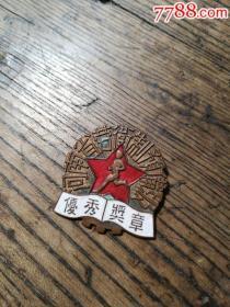 一流品相的河南省劳卫制优秀奖章
