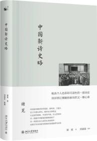 中国新诗史略