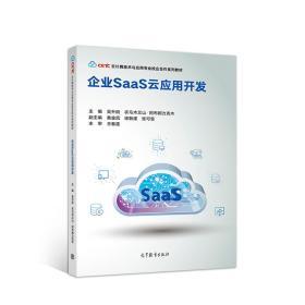企业SaaS云应用开发