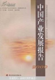 中国产业发展报告  2000