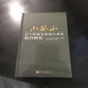 小孤山 辽宁海城史前洞穴遗址综合研究 2009年一版一印科学出版社