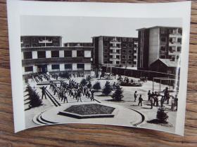 1982年,大庆市政府机关托儿所、幼儿园