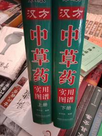 汉方中草药实用图谱,上下册   精装