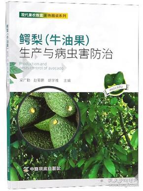 鳄梨(牛油果)生产与病虫害防治