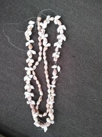 貝殼項鏈珠一串