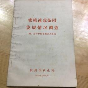 密植速成茶园发展情况调查 附 怎样种好密植速成茶园 杭州市农业局