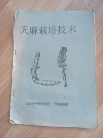 天麻栽培技术