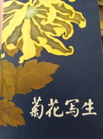 菊花写生  16张全  79年初版,包快递
