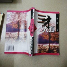 三才大观 (中国气文化丛书)