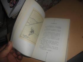 圣爱-新画圣经 (正版现货)韦尔乔 画
