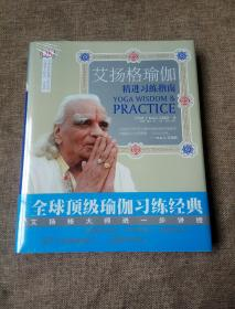 艾扬格瑜伽精进习练指南