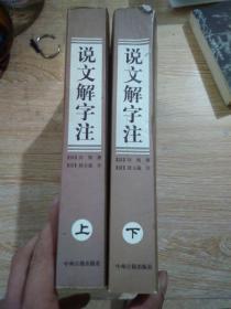 说文解字注(上下)中州古籍出版社