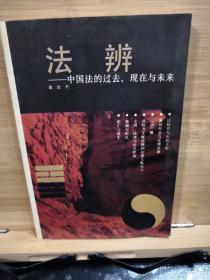 法办一中国法的过去、现在与未来