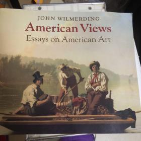 American Views: Essays On American Art (无字迹 无污迹 正版现货)