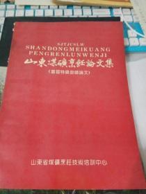 山东煤矿烹饪论文集(首届特级厨师论文)
