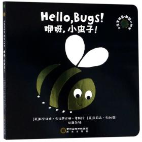 新书--小宝宝视觉·触觉认知书:咿呀,小虫子
