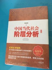 中国当代社会阶层分析  精装版