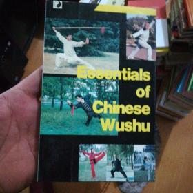中国武术概要 【英文版】》