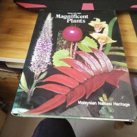 MAGNIFICENT PLANTS YONG HOI-SEN