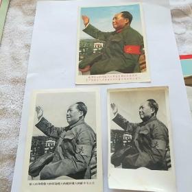 """毛主席""""兵""""字袖标像。三张。照片一张。黑白像一张。彩色像一张。"""