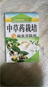 中草药载培与病虫害防治