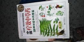 中国疗效中草药:320种对症中药图鉴