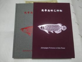热带雨林之神秘 (目录:1.龙鱼的魅力,2.栖息地,3.养鱼场,4.饲育法)鸣美 Scleropages Formosus in Rain Forest 有书盒