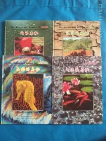 气泡的奥秘,泥浆的奥秘,色彩的奥秘,雨的奥秘[英汉对照](4本合售)(A32箱)