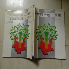 茶树原产地—云南 作者签赠本